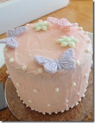 Butterflycake 2